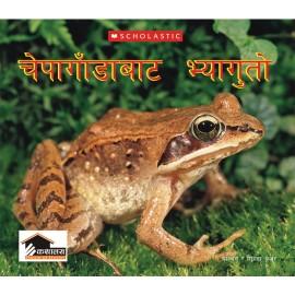 Chepagada Bata Bhyaguta